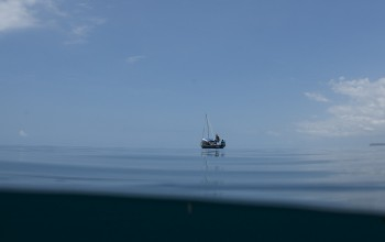 This was our vessel, engines off, and whale sharks in the area.