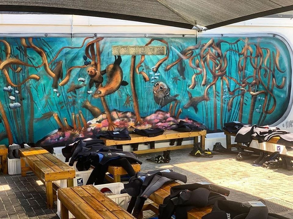 Wetsuits laid out on benches in front of an underwater mural